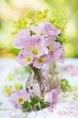 Posy of showy evening primrose (Oenothera speciosa) on table outdoors