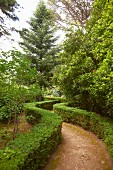 Low hedges lining curving path leading through park