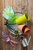 Gardening utensils and seeds on rustic wooden surface