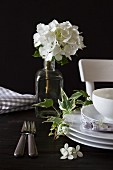 White crockery, sprig of ivy and white hydrangea in vintage glass bottle against dark background