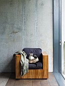 Two Siamese cats sitting on armchair with cubic wooden body against exposed concrete wall