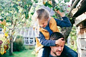 Daughter on father's shoulders, picking apple from tree