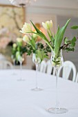 White tulips and ivy in elegant liqueur glasses decorating dining table