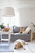 Dog lying on floor in front of couch and white-painted side table below pendant lamp with white fabric lampshade in rustic living room