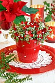 Foliage plant with flower-shaped fairy lights in red pot on plate; poinsettia in background