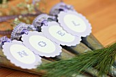 Hanging vases with letters on purple tags reading 'Noel' when put together