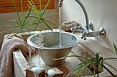 Metal bowl in stone sink flanked by papyrus plants