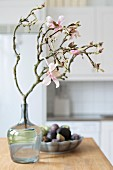 Flowering branch of magnolia in glass vase with bowl of fruit in background