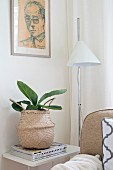 House plant in exotic raffia basket below drawing on wall