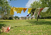 Laundry hung on washing line in sunny garden