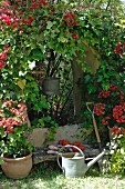 Watering can in front of vegetables on bench and arched opening in wall covered in red-flowering plant