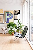 Filigrane Designersessel in Wohnbereich mit Retroflair, Zimmerpflanzen und Bildergalerie