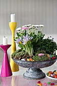Spring flowers and Easter decorations in vintage metal dish next to brightly coloured candlesticks