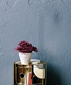 Dark red flowers in a marble plant pot on a shiny gold container against a gray wall