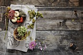 Autumnal decoration materials on a wooden table