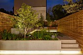 Illuminated, modern, terrace-house garden with wooden screens below night sky