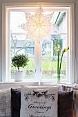 Winterlich dekoriertes Fenster mit Papierstern und Pflanzen