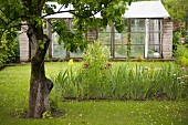 Vintage greenhouse in idyllic garden with fruit tree and bed of flowering plants