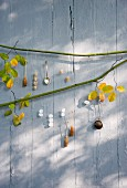 Wall decoration made from rock sugar, rock sugar stirrers, sugar spoon and tea infuser