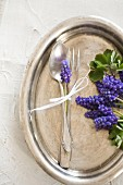 Grape hyacinths and silver cutlery on silver tray