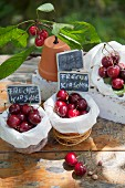 Paper bags of cherries and signs on table