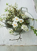 White crocuses and branches of blackthorn blossom in bowl