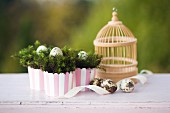 Quails' eggs in Easter nest and small birdcage on pink surface