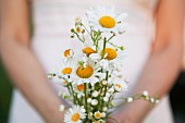 Posy of white chamomile