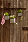 Various herbs in metal containers hung from rustic wooden doors from ribbons