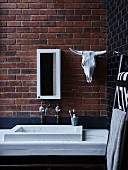 Minimalist washstand below narrow mirrored cabinet and cow skull on brick wall