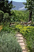 Narrow stepping stone path leading to rose bushes, clipped hedges and mountain landscape