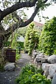 Gartenweg mit Obstbaum, Regentonne und niedriger Natursteinmauer