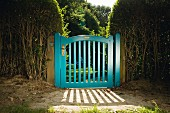 Blue-painted garden gate flanked by hedges