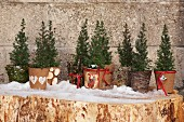 Conifers in hand-decorated winter planters