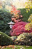 Oriental-style, autumnal garden