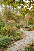 Stone-flagged path leading through herbaceous borders in autumnal garden
