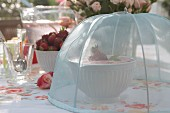 Strawberries and quark under mesh cover on set table