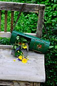 Medicinal flowers in old tin on wooden bench in garden