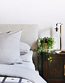 Antique bedside table with bedside lamp and ivy plant next to bed with upholstered headboard