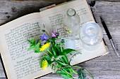 Wiesenblumen und Apothekerflasche auf aufgeschlagenem Rezeptbuch