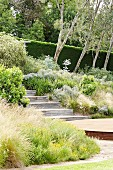 Wooden stairs on a slope overgrown with bushes and ornamental grasses in the garden
