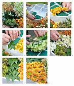 Instructions for making heart-shaped autumn flower arrangement