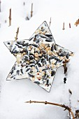 Star-shaped pastry butter filled with bird cake lying on snow