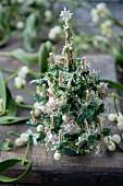 Miniature Christmas trees and mistletoe berries on wooden table