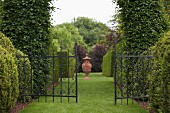 Wrought iron gate between tall, clipped box hedges and well-tended lawn path leading to amphora