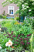 Flowering herbaceous border in garden of brick house in background with woman framed in window