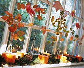 Autumnal arrangement of leafy branches, moss and candles on windowsill