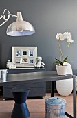 Potted orchid on metal desk in front of grey wall