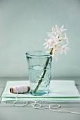 Single stem of white flowers in vase next to reel of thread