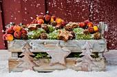Verschneite Holzkiste mit Moos, Dekoäpfeln, Zapfen und Sternen